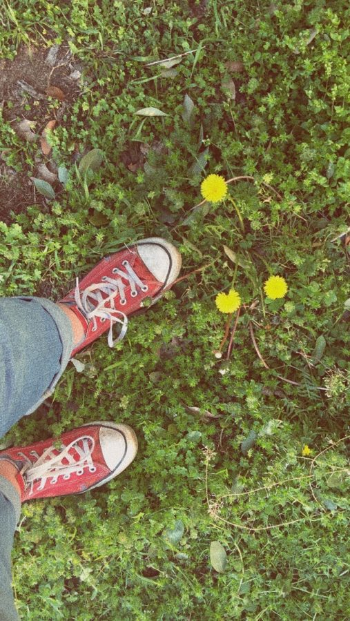 Just Spring Things