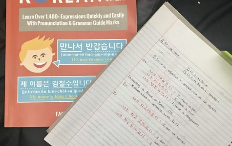 Quarantine Quest: Learning Korean