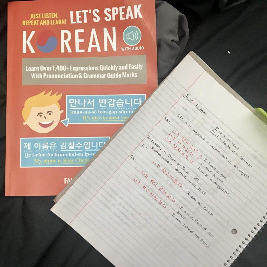 Quarantine+Quest%3A+Learning+Korean