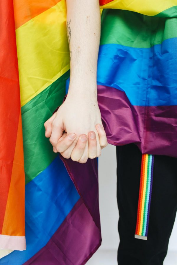 Two+people+are+holding+hands+with+LGBTQ%2B+pride+flags+seen+behind+them.