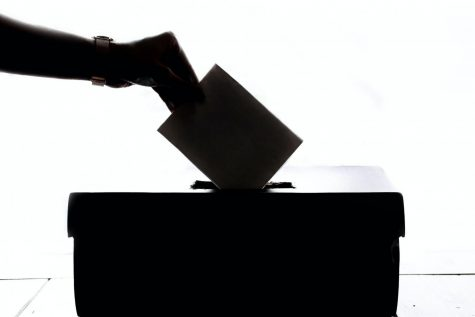 A person is seen placing their vote into a ballot box.
