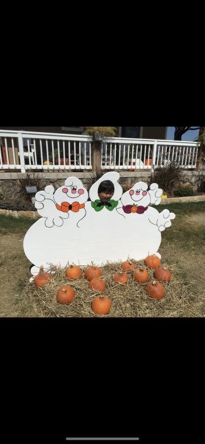 Daniel+having+fun+at+the+Flower+Mound+Pumpkin+Patch%21